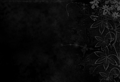 Backgrounds_Floral_ornament_on_black_wallpaper_078541_