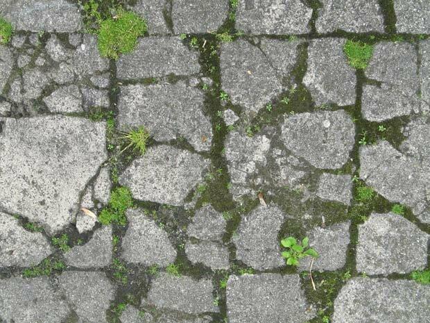 Фоны для презентаций - Узоры из камня 5
