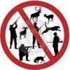 Защита животных