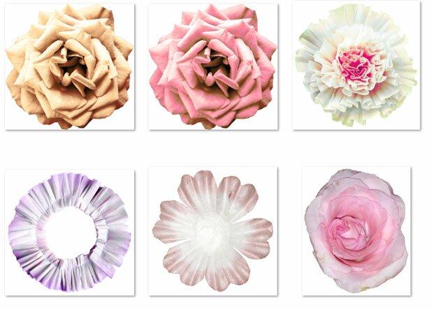 Коллекция мода и цветы