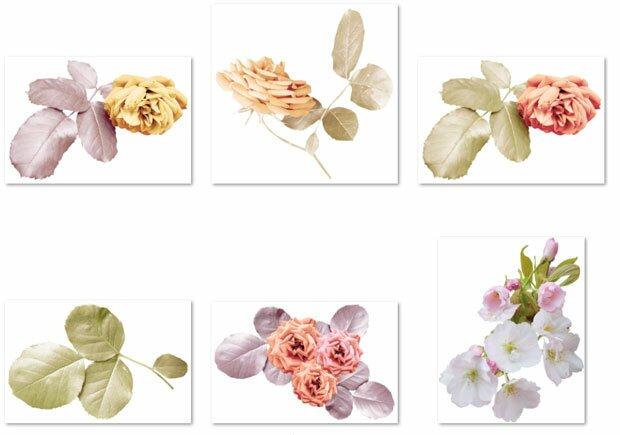 Цветы с листьями