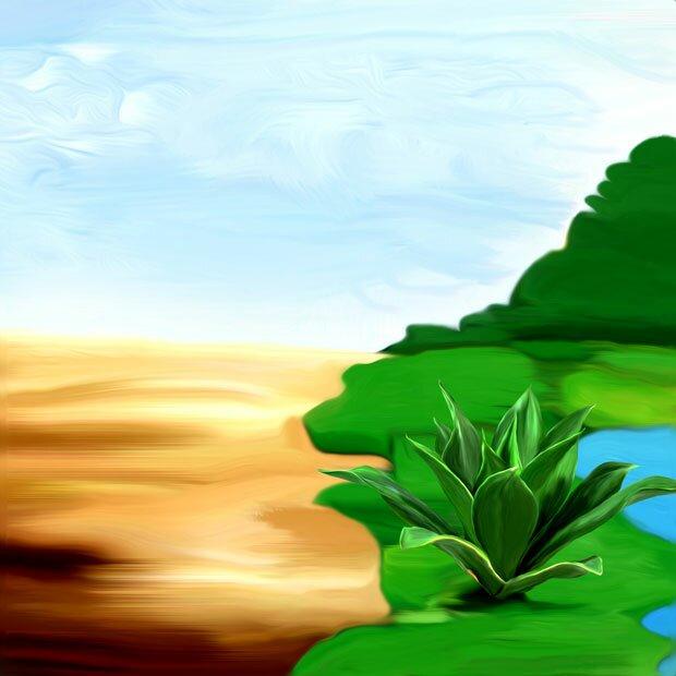 Трава и лес