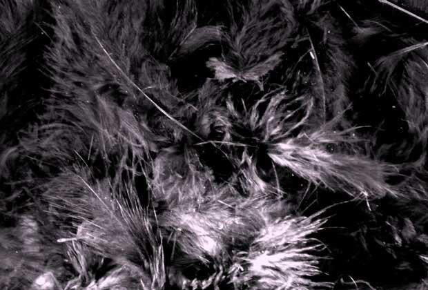 Ледяной узор на черном фоне