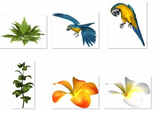 Попугаи в тропиках