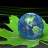 Земля на зеленом листе