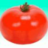 Овощи в огороде - презентация