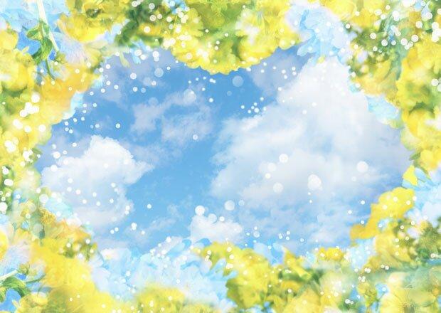 Цветочное ассорти