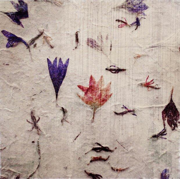Цветы как бумажный фон