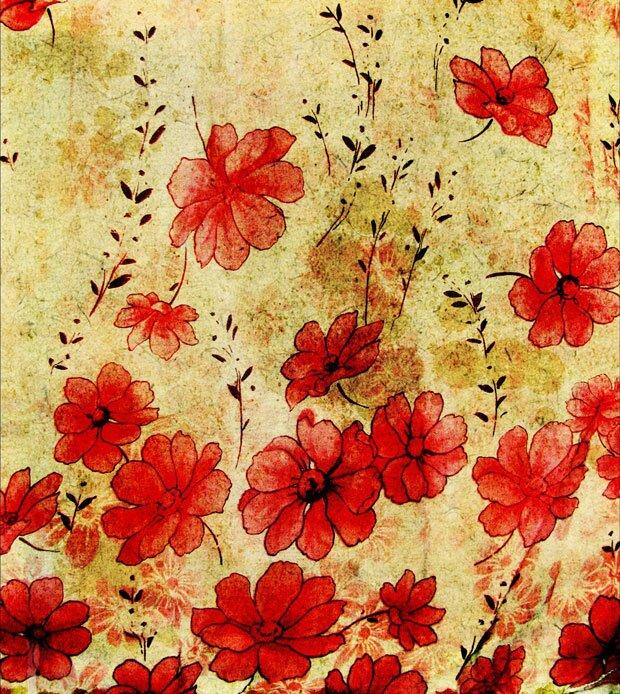 Цветки мака