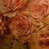 Фон - Романтика и цветы