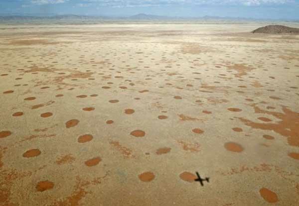 Мертвые круги в пустыне