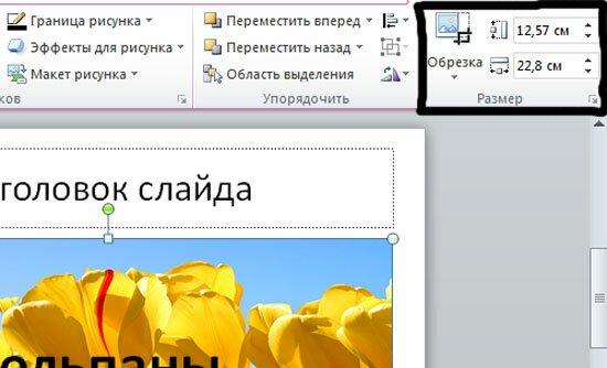 Размер изображения на слайде