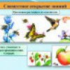 Растения - производители