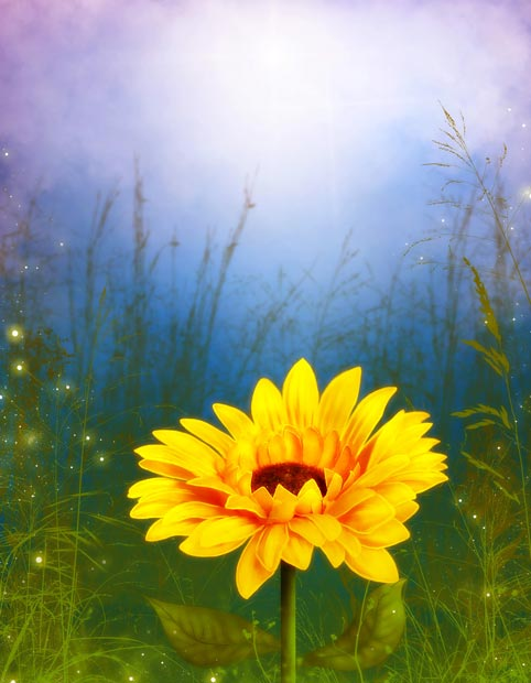 Фоны для презентаций - Волшебные цветы 1