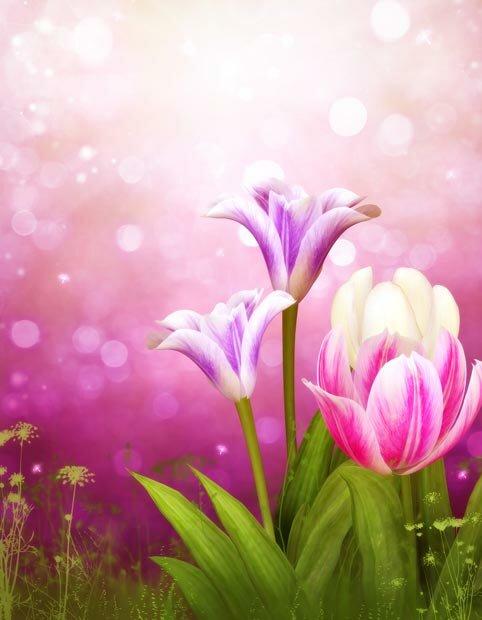 Фоны для презентаций - Волшебные цветы 7