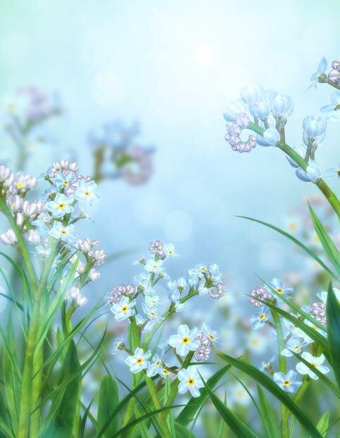 Фоны для презентаций - Волшебные цветы 8