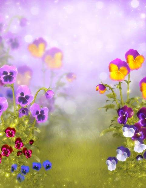 Фоны для презентаций - Волшебные цветы 9