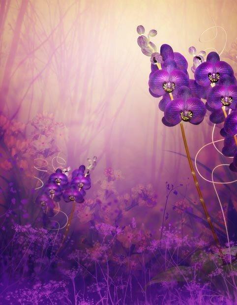 Фоны для презентаций - Волшебные цветы 10