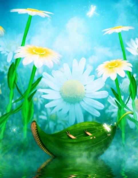 Фоны для презентаций - Волшебные цветы 11