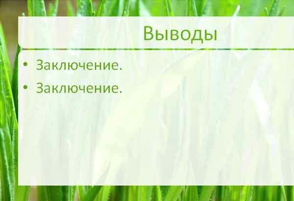 Шаблон презентации Зеленая трава - основная часть