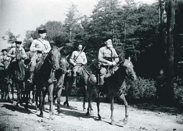 Роль лошадей в Великой Отечественной войне