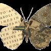 "Коллекция ""Бабочки"""