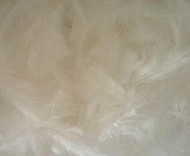Белые перья - фон