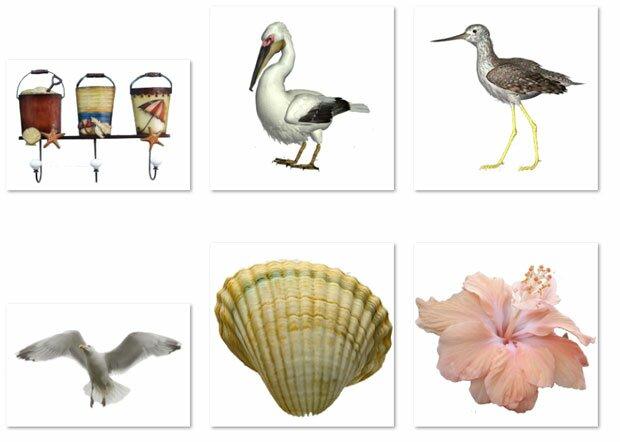 Пеликан и цапля