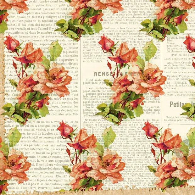 Розы на фоне старой газеты