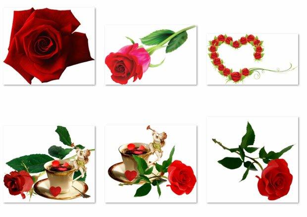 Розы и любовь