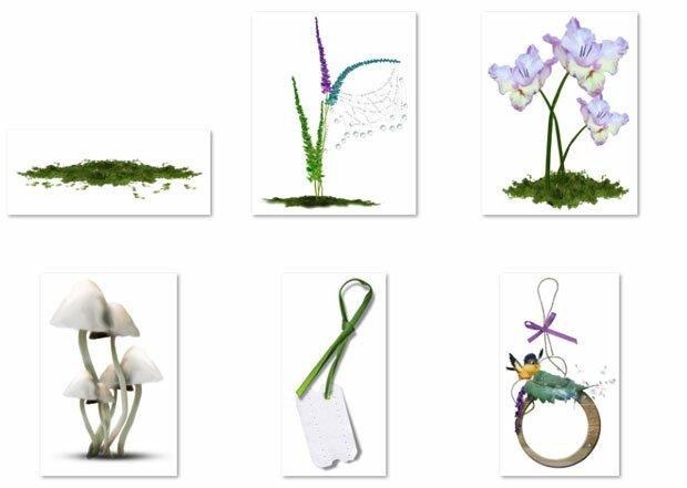 Цветы и молодые ростки