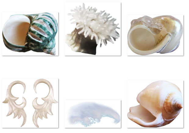 Коллекция подводный мир