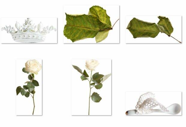Корона и засохшие листья