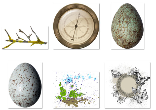 Яйцо и компас