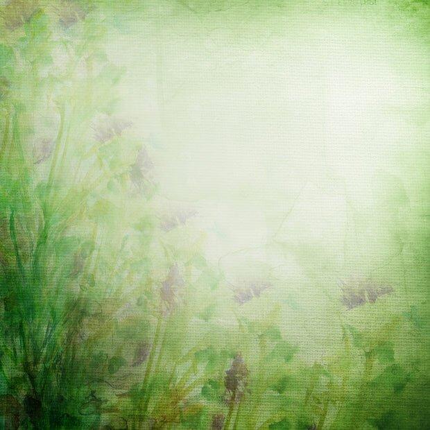 Зеленые растения