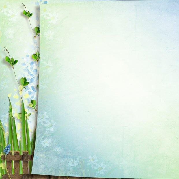 Растение на фоне