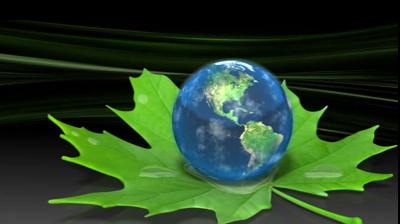 Земля на листке клена