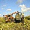 Сельское хозяйство в системе природопользования