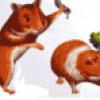 Что едят животные - презентация