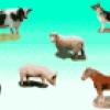 Домашние животные - презентация