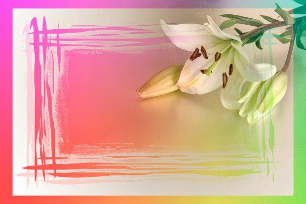 Фоны для презентаций - рамки с цветами 4