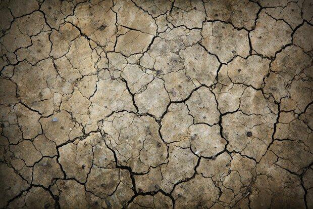 Засуха на земле