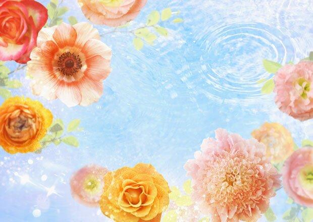 Фон цветочное ассорти