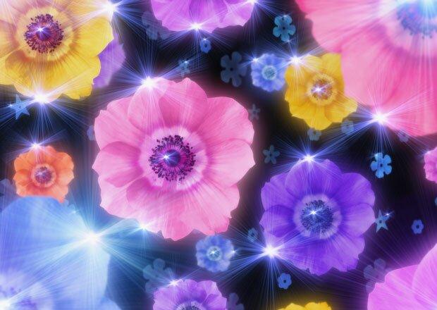 Цветы блестят