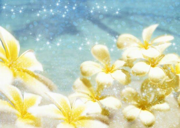 Блестки и цветы