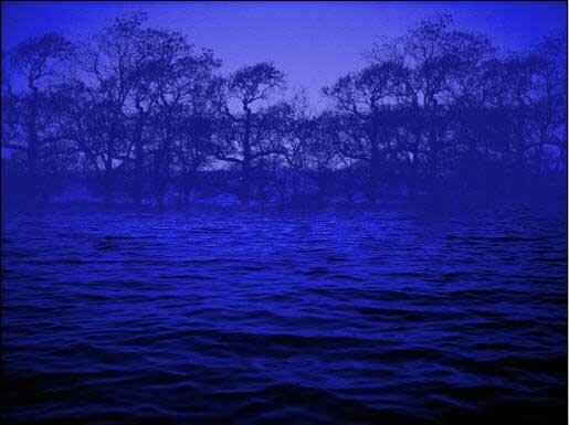 Темно-синий цвет