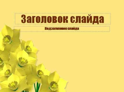 Шаблон презентации Букет цветов - титул