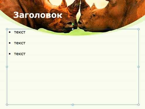 Шаблон презентации Битва носорогов - содержание