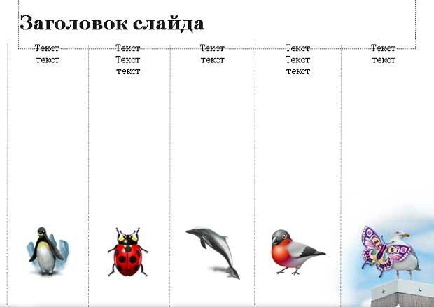 Шаблон презентации Животные - содержание